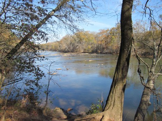 Chattahoochee River at Island Ford