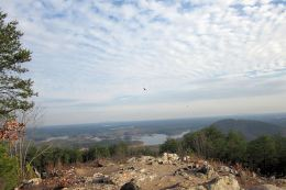 Pine Mountain Trail – East Loop and Summit