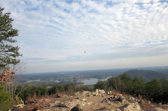 Pine Mountain Summit View