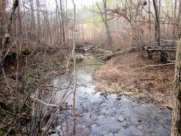 Pickett's Mill Trail – #22 from 60 Hikes Within 60 Miles ofAtlanta
