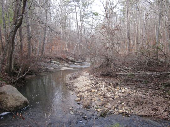 Creek at Pickett's Mill Trail